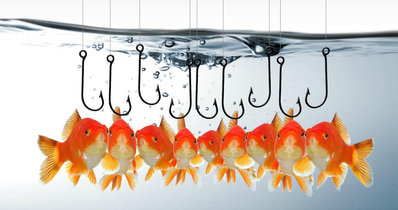 Phishing, trawling, hacking, cyber security
